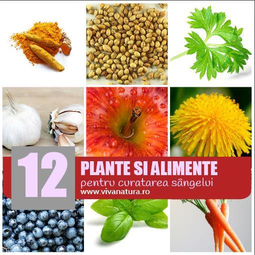 12 Plante medicinale și alimente care vă pot curăța sângele în mod natural (II)